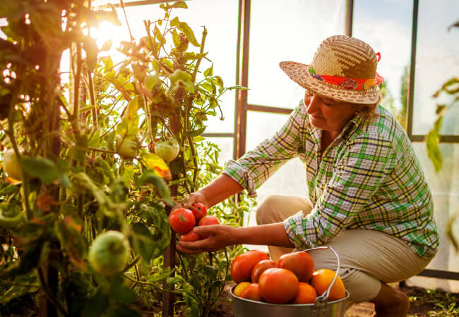 Back Pain & Tips To Avoid It While Gardening